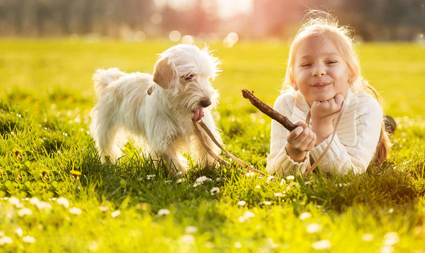 Tips on the coexistence of children with dogs and cats: